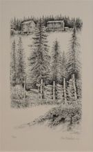 Kari Barstad - Hus med skog